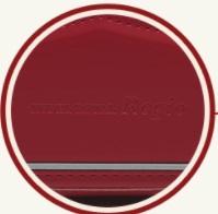 モデルロイヤル・レジオのロゴ